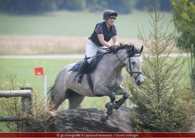Sirch,Johanna_Kilcotrim-Skyline_Geländepferde-A_180805_01